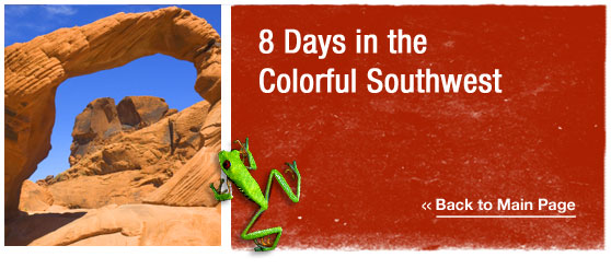 ATW Teen Tours : 9 Days in the colorful southwest